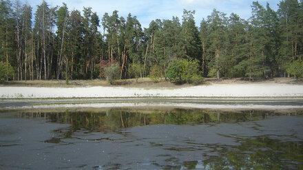 В Воронежском заповеднике из-за жаркого лета пересохло озеро