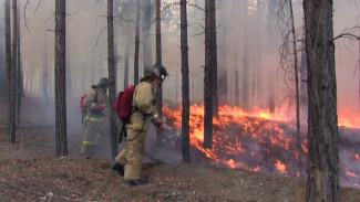 В Воронежской области набирают рабочих на время пожароопасного сезона