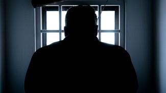 В Воронежской области мужчину отправили в тюрьму за пьяное вождение