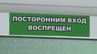 За сутки от коронавируса избавились 589 воронежцев