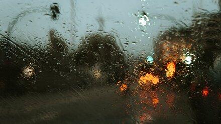 В выходные Воронежскую область накроют дожди с грозами