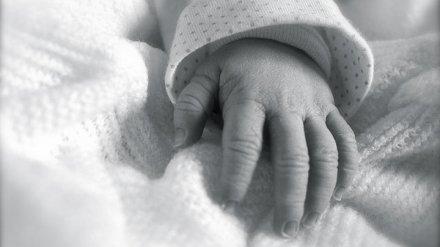 В Нововоронеже в мусорном контейнере нашли мёртвую новорожденную девочку