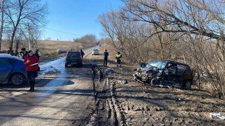 Полиция рассказала подробности жуткого ДТП с погибшим подростком под Воронежем