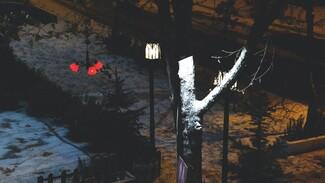В Воронеже компания парней напала на гулявших по ночному городу девушек