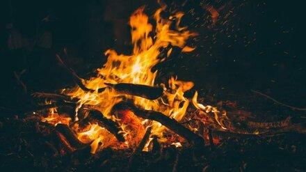 Сжигавший мусор воронежец случайно спалил три дома и пасеку