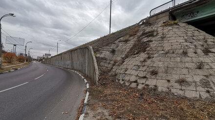 Общественники предупредили об угрозе обрушения виадука у воронежского «Динамо»