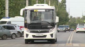 В Воронеже в честь Дня Победы появятся необычные автобусы