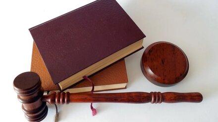 Обвинённому в коррупции зятю бывшего воронежского вице-губернатора смягчили статью