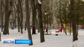 Проекты предлагаемых для благоустройства общественных пространств Воронежа представят в марте