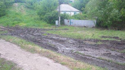 «Скорая не может проехать». Житель воронежского райцентра пожаловался на ужасную дорогу