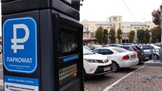 Первый месяц платных парковок обошёлся воронежцам в 5 млн рублей