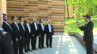В Воронежской области откроются виртуальные концертные залы
