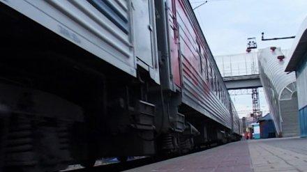 В Воронежской области из-за пьяного пенсионера на 1,5 часа остановили поезд