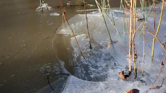 В водоёме в Воронежской области утонул пьяный мужчина
