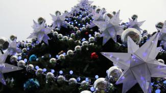Главная ёлка Воронежа вошла в десятку самых высоких в стране
