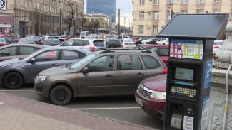 Решить проблемы за 1,5 месяца. Депутаты дали шанс концессионеру платных парковок Воронежа