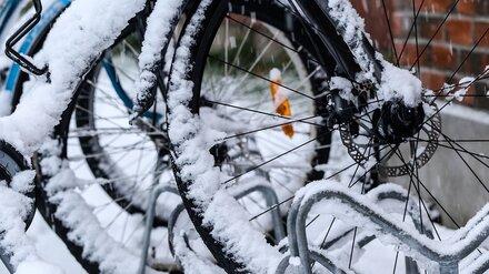 Воронежцев позвали на новогодний велопробег Дедов Морозов