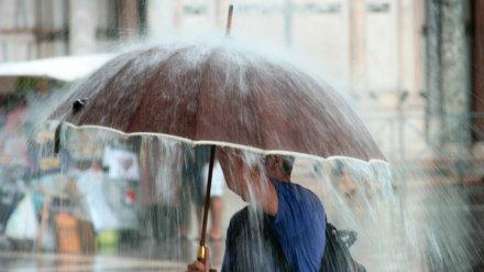 Метеорологи рассказали о погоде на новой рабочей неделе в Воронежской области