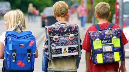 Эксперты с трудом нашли в продаже хорошие рюкзаки для школьников