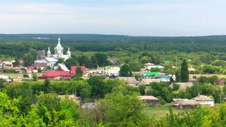Воронежцам предложили выбрать самое красивое село