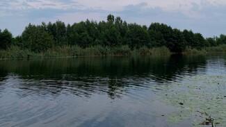 В реке Битюг в Воронежской области утонул пенсионер