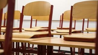 В Воронежской области на карантин полностью закрыли две школы