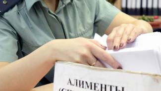 Жителя Воронежской области арестовали за неуплату алиментов