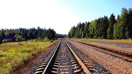 Поезд протаранил КамАЗ на железнодорожном переезде в Воронежской области