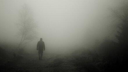 Родные насмерть сбитого под Воронежем неизвестного мужчины нашлись в другой стране