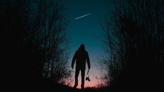 В небе над Воронежем пролетит «звёздный поезд» Илона Маска