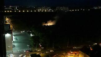 В яблоневом саду Воронежа произошёл пожар: появилось видео
