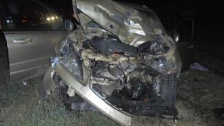 В массовом ДТП на воронежской трассе пострадали двое взрослых и трое детей