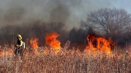 У воронежской больницы №8 загорелась сухая трава