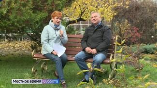 Воронежский агроном назвал основные правила обрезки деревьев