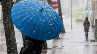 Спасатели предупредили жителей Воронежской области о мокром снеге, тумане и гололёде
