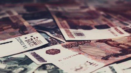 В Воронежской области разработали дополнительные меры поддержки малого бизнеса