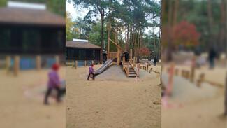 Воронежцы возмутились бетонной горкой в парке «Алые паруса»