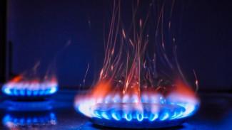 В Воронежской области отец и 9-летняя дочь отравились угарным газом