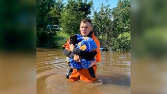 Воронежские спасатели эвакуировали кота из затопленного дома
