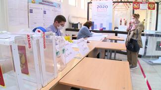 В Воронежской области избиратель проголосовал дважды
