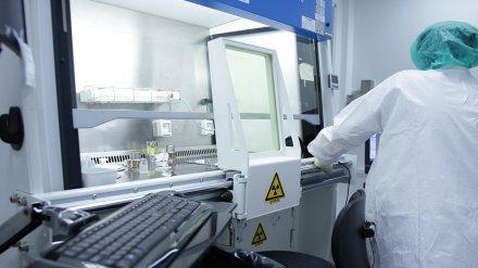 Число госпитализированных с подозрением на коронавирус воронежцев выросло до 8