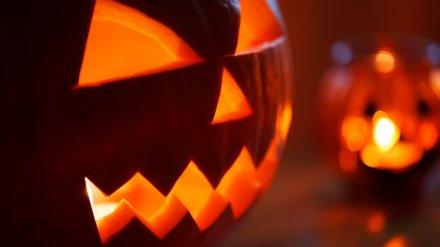Воронежцев позвали на Halloween Party в демократичный паб