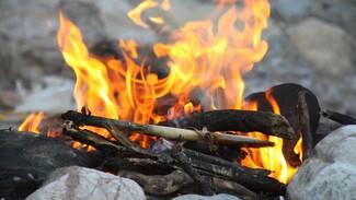 В Воронежской области за выходные поймали 10 нарушителей противопожарного режима