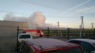 Спасатели сняли на видео тушение крупного пожара на мебельной фабрике под Воронежем