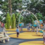 Воронежцам предложили обсудить концепцию восстановления парка «Танаис»