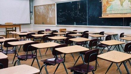 В Воронеже во время выборов уроки в обычном формате оставят лишь в 13 школах