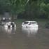 Владельцы затопленных в Центральном парке машин объединятся ради иска к властям Воронежа