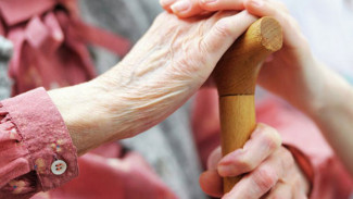 В Воронежской области внедряют программу обучения по уходу за пожилыми людьми