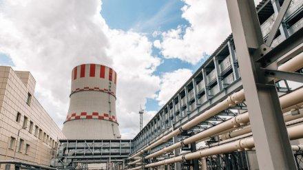 Нововоронежская АЭС за год подготовится к партнёрской проверке столичного центра WANO