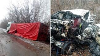 Воронежская полиция показала фото с места смертельного ДТП с двумя грузовиками